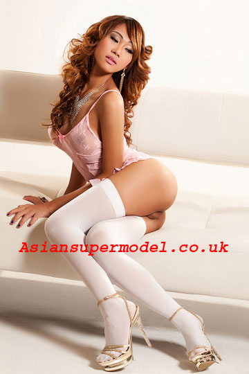 thai model escort transvestite escorts